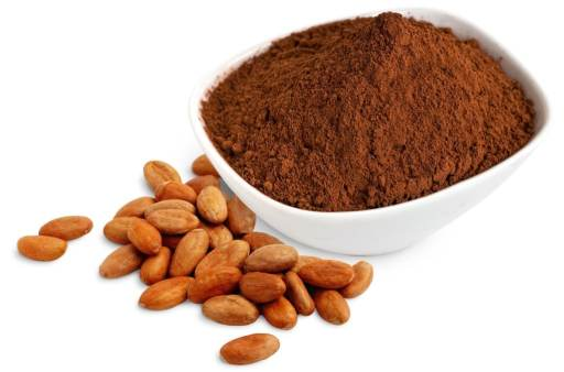 This image has an empty alt attribute; its file name is cacao_powder_bowl_with_beans_2-1024x675.jpg